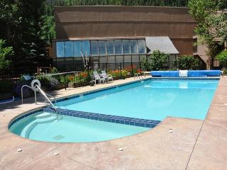Convenient Condo in East Vail only 3.5 miles from Vail village