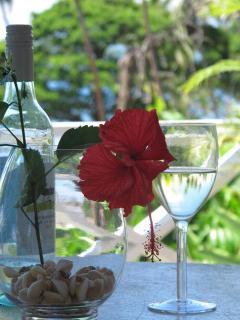 Hibiscus & wine