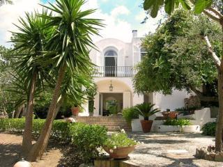 Villa Luna - Anacapri, Capri Island - Campania