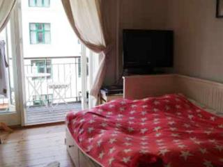 Nice Copenhagen apartment at Christianshavn metro