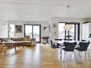 Nice Copenhagen apartment near the Opera