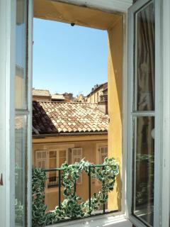 Another view from living room overlooking the small bright Street.(ruelle in french,) birds,