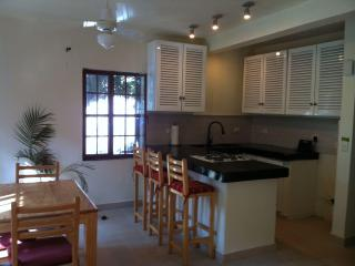 Renovated kitchen with polished concrete counter top and plenty of light