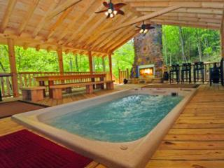 *PARADISE* Swimspa, Tunnels,, Gatlinburg