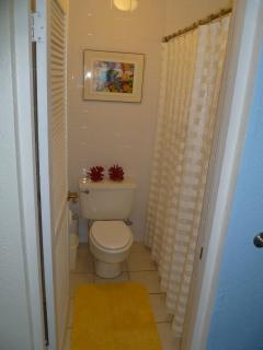 Colorful 2nd Bathroom has private Toilet and Shower Room