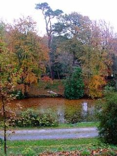 View from garden over the pond