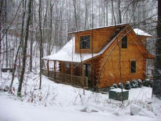 The Heart Center - Gorgeous Log Cabin In The Woods