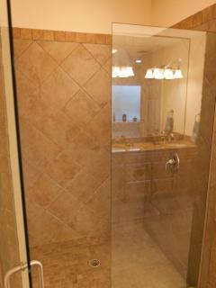 Large walk-in shower in a master bathroom