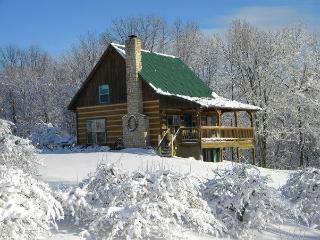 Luxury log cabin located in a working orchard, Philo
