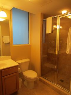 Guest Bath with porcelain tile stand up shower with built in seating