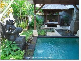 Gorgeous villa with pool, WiFi, private beach, Nusa Dua