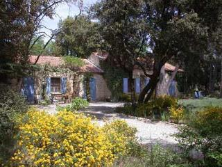 La Tres Grande Peyriere - Stone Villa With Pool - large wooded property - 3 bedrooms -, Mazan