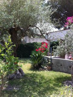 Casa Max Garden 1