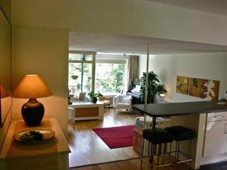 Luxurious Apartment - Close to Everything, Den Haag