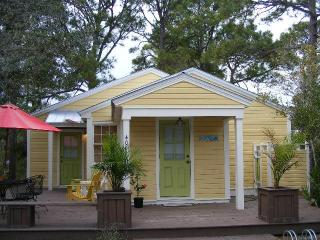 Don't Blink Rental Cottage Seagrove Beach 30A Santa Rosa Beach Florida