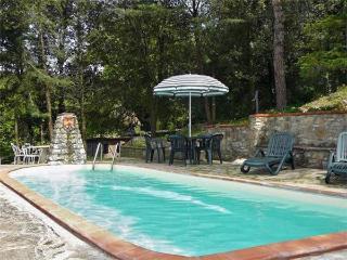 15462-Apartment Chianti, Castellina In Chianti