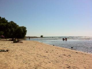 Lake Ontario/Pulaski/Sandy Pond/Salmon River-AFram
