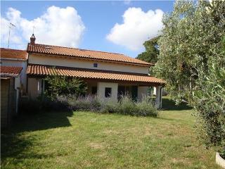 16239-Holiday house Cecina
