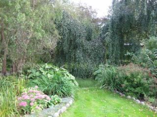 Garden (south-east)