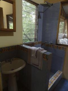 bathroom with shower and view