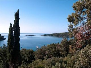 32329-Apartment Cavtat, Molunat