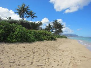 Oahu North Shore Cozy Condo Steps from the Beach, Waialua