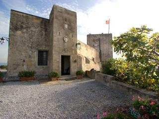 Torre Saracena, Follonica
