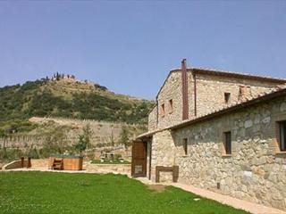 San Giovese, Montalcino