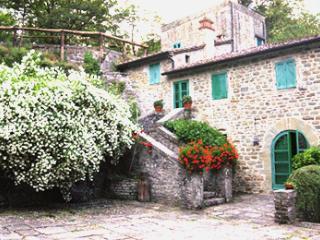 Capraia, Terranuova Bracciolini