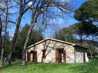 33134-Holiday house Costa Etru, Montescudaio