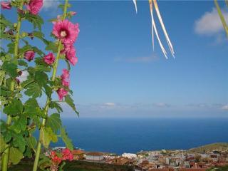 33384-Apartment Icod de los Vi, Santa Cruz de Tenerife