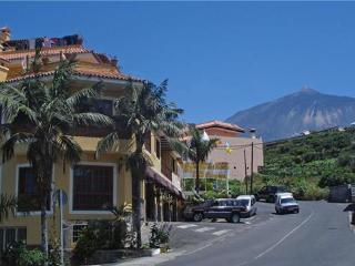 33434-Apartment Icod de los Vi, Santa Cruz de Tenerife
