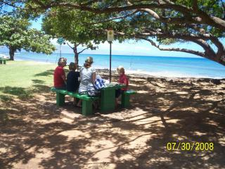 Cozy Maui Condo near Kaanapali!