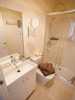 The bathroom includes towels and all amenities newly installed.