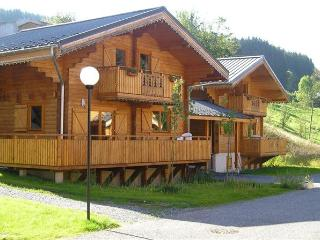 35364-Holiday house Alps, Morillon