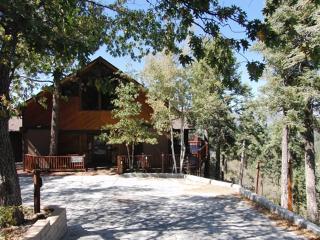 #008 Amazing Views Estate, Big Bear Region