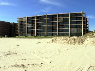 On the Beach!!! 4th floor center of building