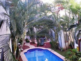 Shady palm trees.