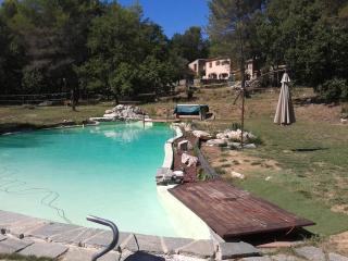 Charming, Pet-Friendly 3 Bedroom Villa on with a Big Pool, Tourrettes-sur-Loup