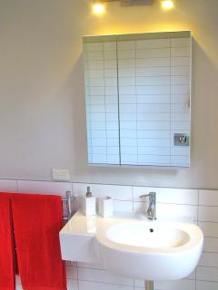 Brand new bathroom with walk in shower.