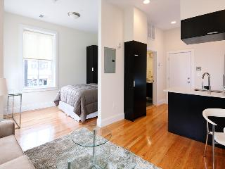 South End Boston Furnished Studio - 784 Tremont Street Unit 2