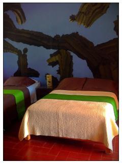 Cactus room.