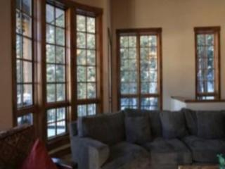 Living Room with walls of windows looking out into the forest