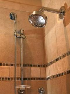 Master Bath Walk in glass and tile shower