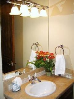 Downstairs Hallway Bathroom with sink and tub-shower combination
