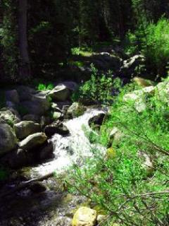 Relax on the front balcony and listen to the soothing sounds of a cascading mountain creek  BASE CAMP ON JANE CREEK...