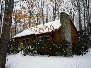 Red Run Cabin
