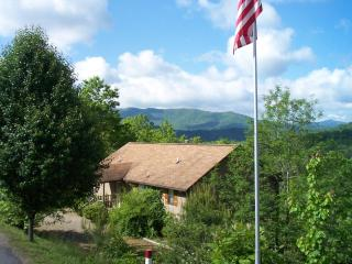 The Daisy Cabin - Laurel Mountain Cabins - Panoramic Views!