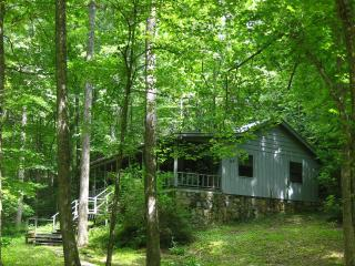 MY LITTLE BLUE HOUSE   Conveniently located, Hiawassee