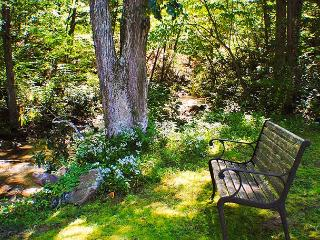 Bench by the stream